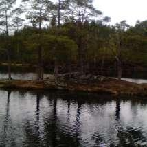 Stavsjøen, Malvik kommune/Stav lake in Malvik.Foto: Privat
