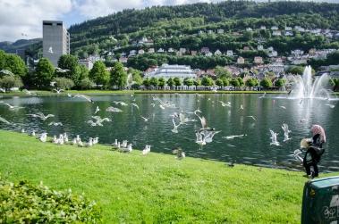 Et litt sånn typisk Bergensblikk. Litt for mange måker for min smak... Foto: Marta Øgaard